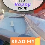 How To Sharpen Rapala Fillet Knife