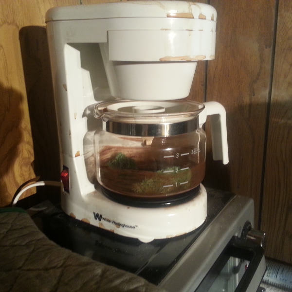 mold in coffee maker